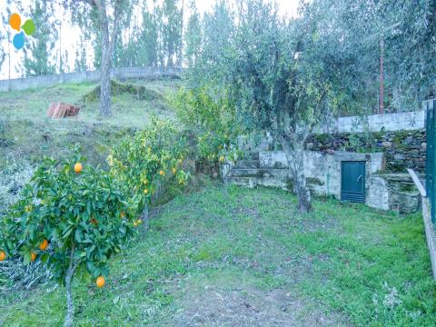 Quinta - Sarzedas, Castelo Branco