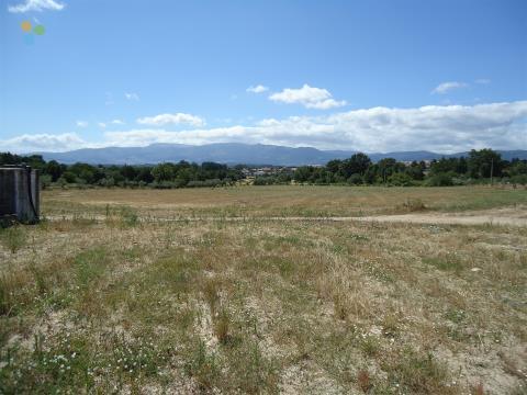 Terreno - Caria, Belmonte
