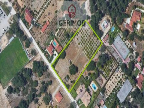 Verdant plot of 5000 m2, mixed, close to Lagus campo and Aventura na Moita