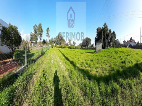 Terrain verdoyant de 5000 m2, mixte, proche de Lagus campo et Aventura na Moita.
