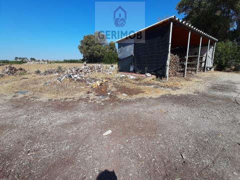 Terreno Habitação/Agrícola - Setúbal, Moita
