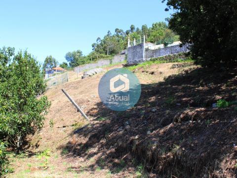 Moradia para Restauro com terreno, Venda, Negrelos, Santo Tirso