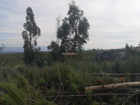 Quota parte (1/2) terreno Paranhos da Beira