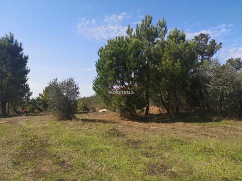 Terreno agrícola Paranhos da Beira