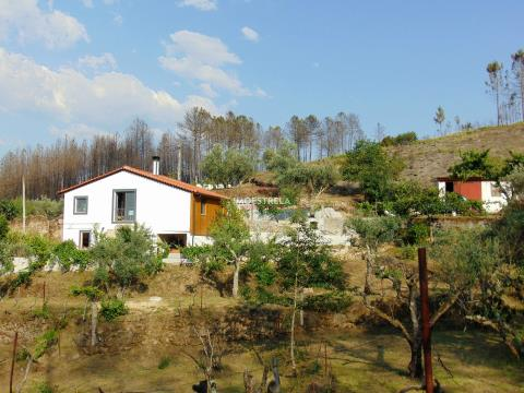 Quinta com moradia renovada - Serra da Estrela