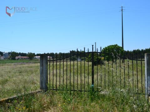 Quinta com 1 hectare com possibilidade de construção!