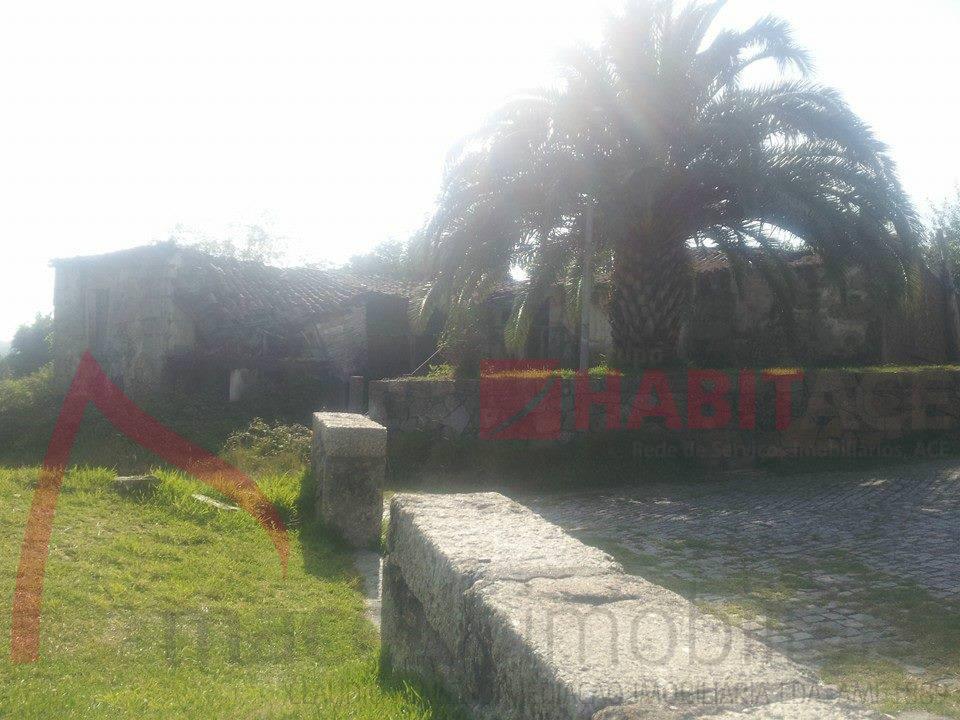 Quinta T5