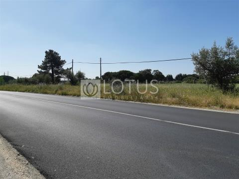 Land in Montijo for Business or construction of Houses