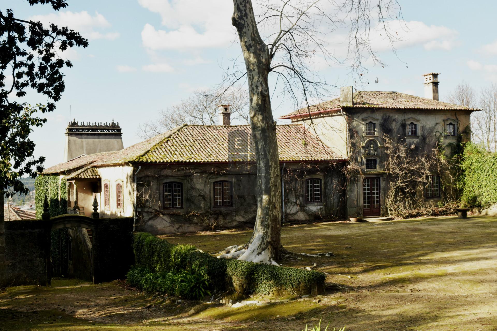 Quinta T9