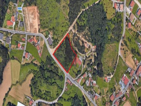Terreno para Construção a 5 min de São João da Madeira e Santa Maria da Feira