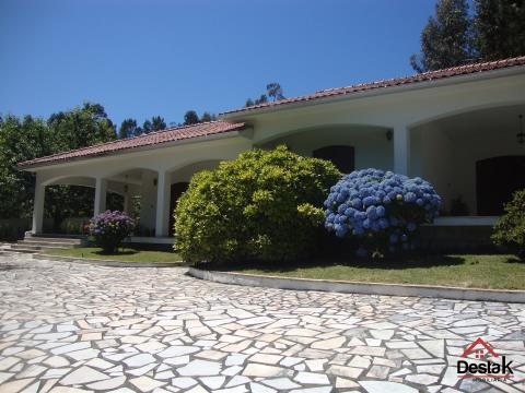 Excellent 4 bedroom villa with pool located 10 minutes from the Termas de São Pedro do Sul.