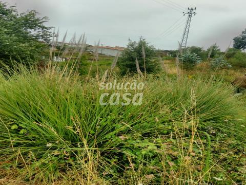 Terreno com cerca de 5.000 m2