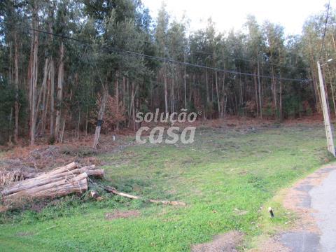 Terreno para Construção junto à Capela de Sanfins, Várzea, Arouca