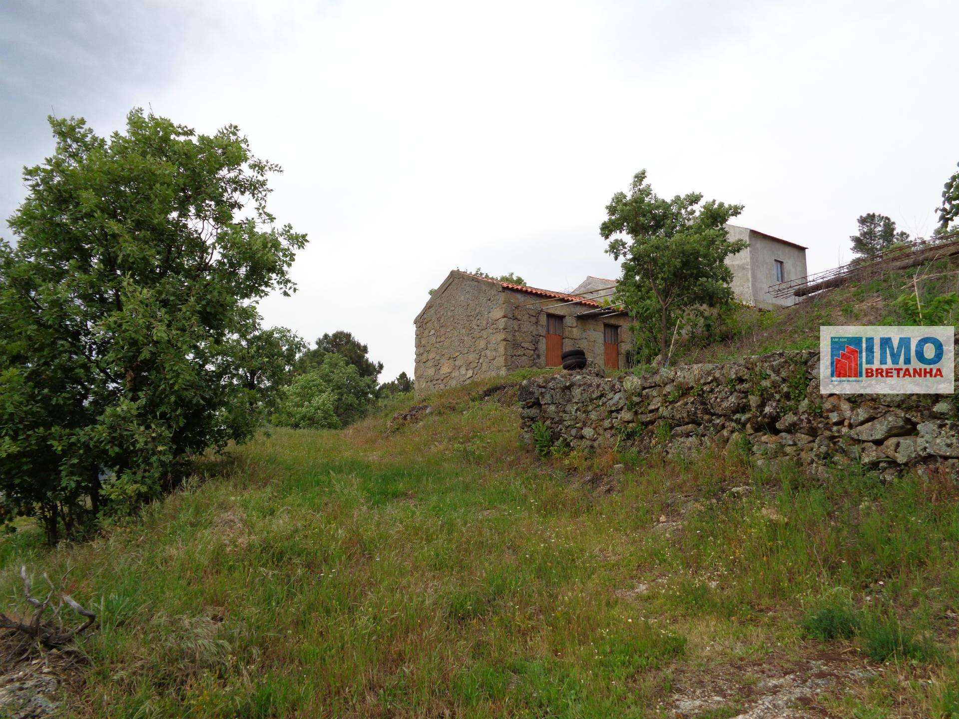 Detached house T1