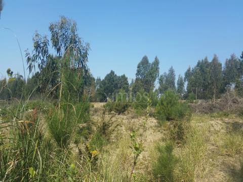 terreno na póvoa de varzim
