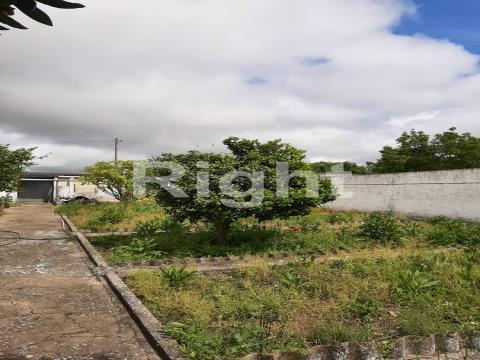 Moradia V3 situada a 18km de Santarém