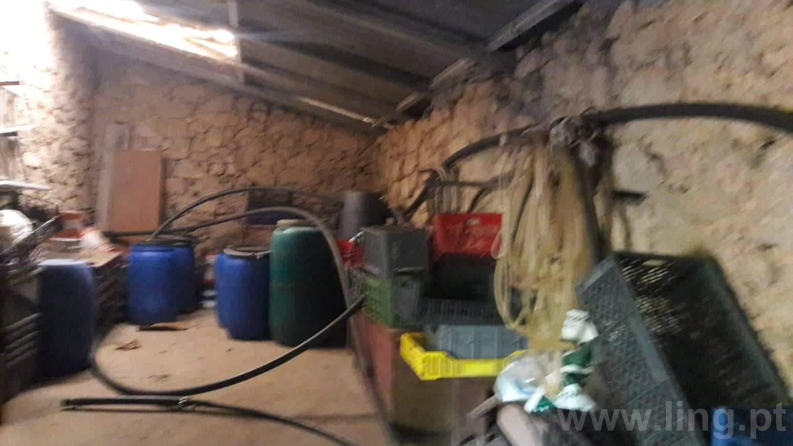 Farm Studio