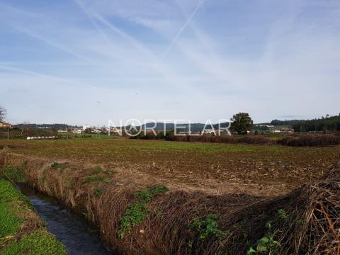 Terreno agrícola em Vila Nova de Famalicão