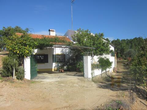 Small Farm T3
