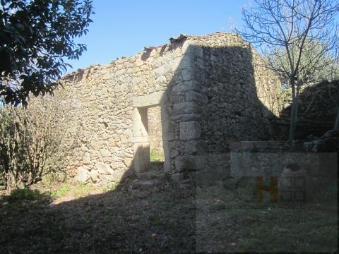 Terrain 1 Chambre(s)