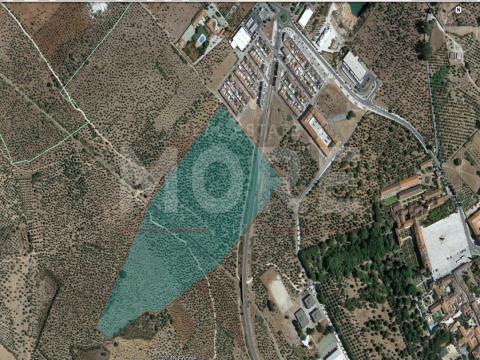Terreno urbano para construção - Vila Viçosa, Évora, Vila Viçosa