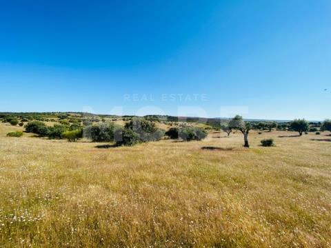 Terreno rústico com 8,85 hectares