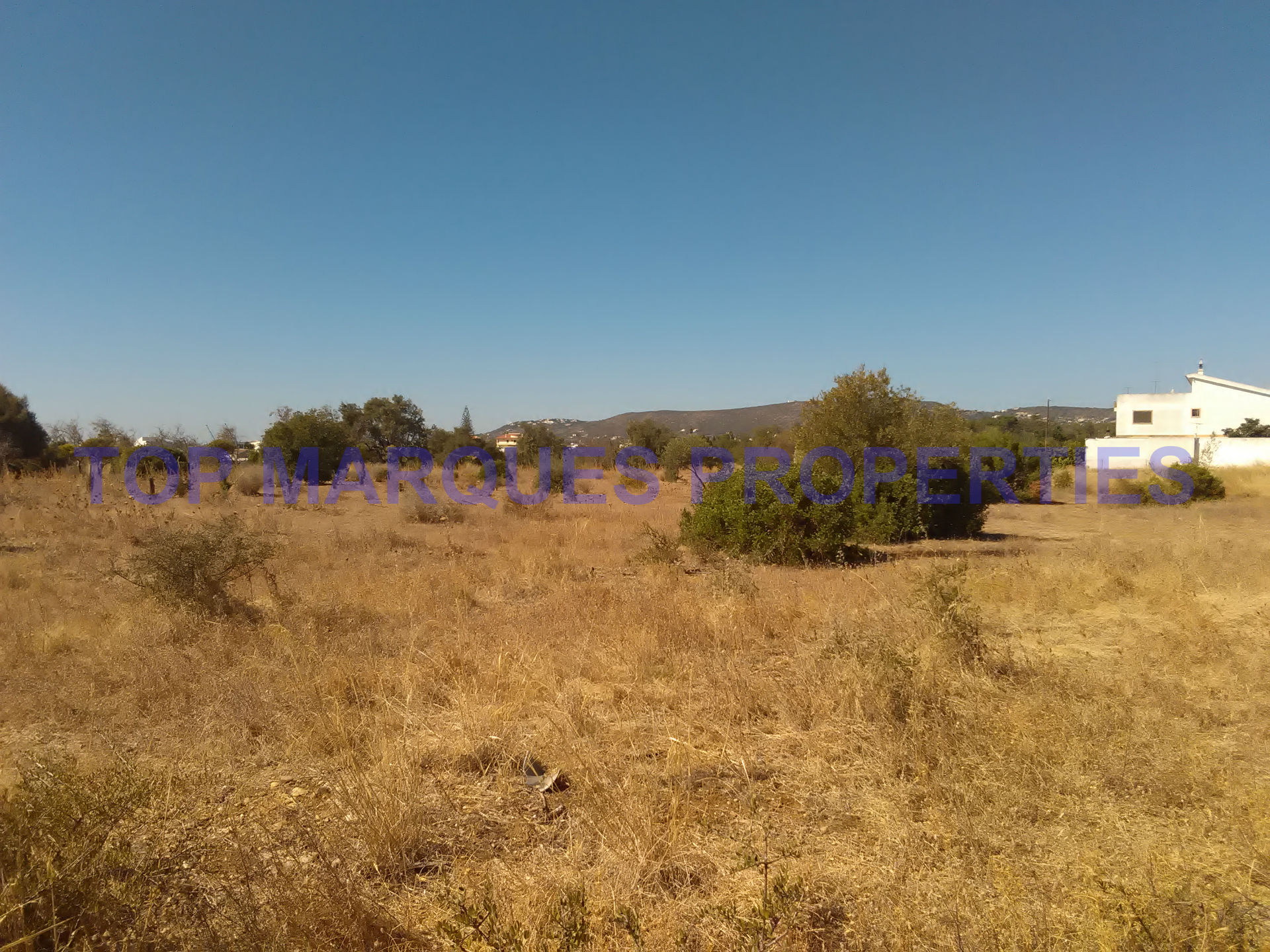Terreno Misto T1