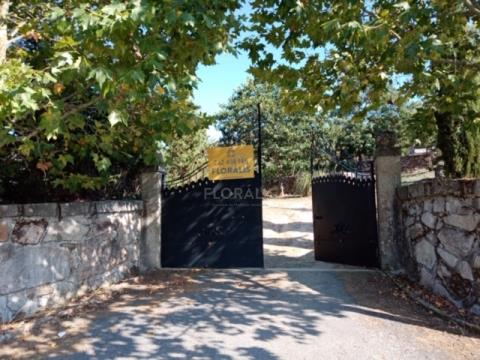 Walled farm with 3 hectares, construction feasibility.