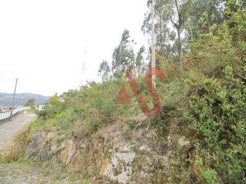 Terreno florestal com 46.000 m2 em Santa Eulália, Vizela