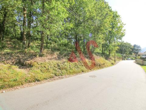 6,000 m2 de terreno forestal en Santa Eulália, Vizela