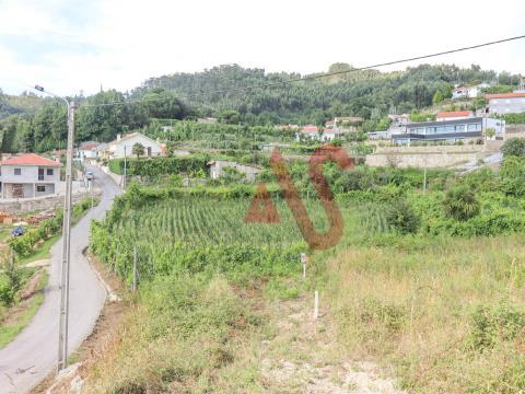 Terreno Rústico - Braga, Vizela, São Miguel e São João