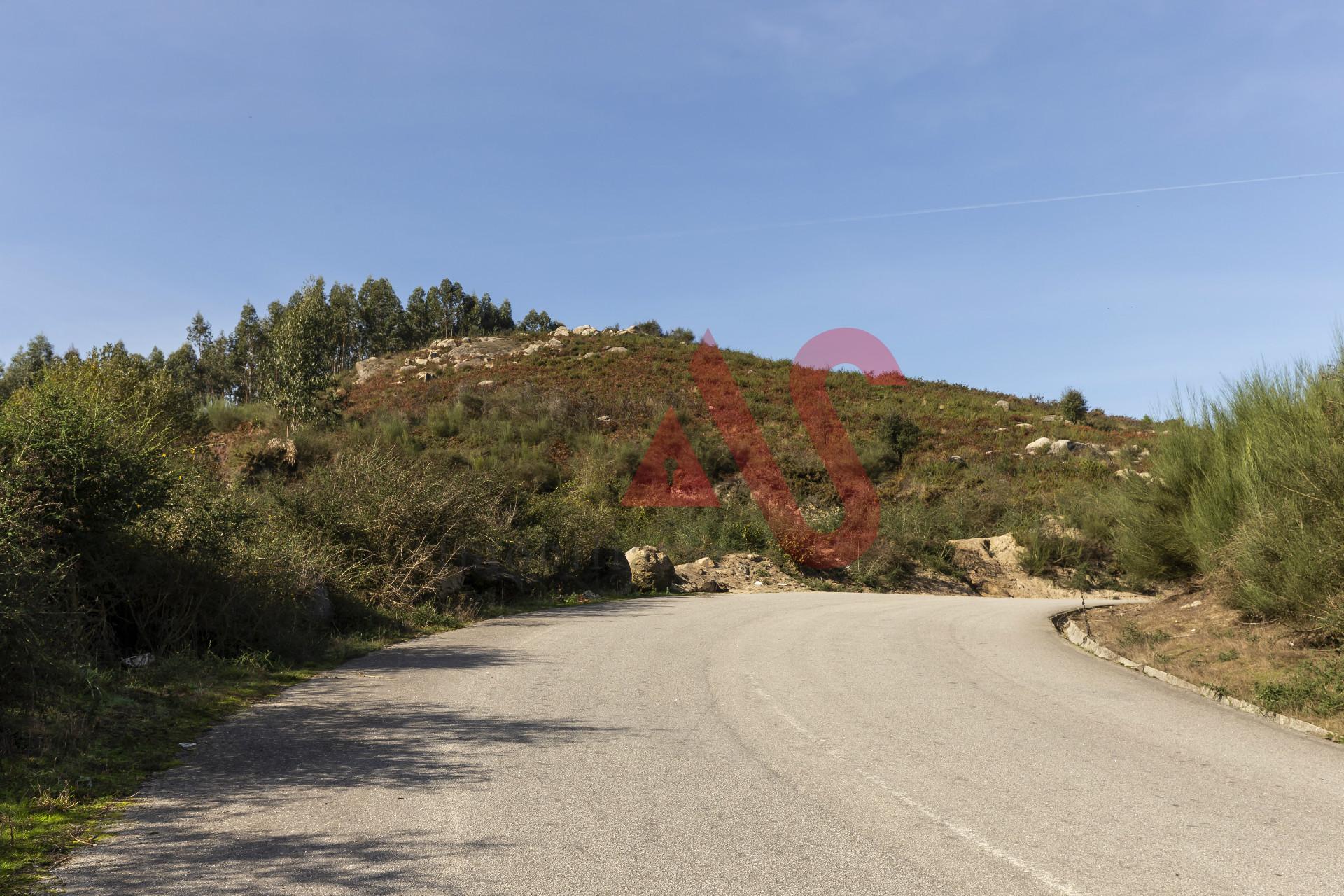 Terreno rústico com 50.000 m2 em Santa Eulália - Vizela
