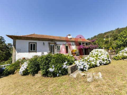 Quinta T3 com 9857 m2 em Santa Eulália, Vizela