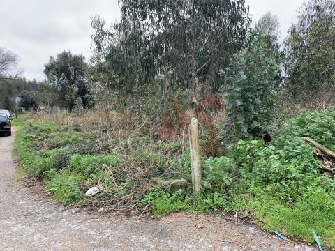Terreno rustico con 1.250 m2 a Sever do Vouga