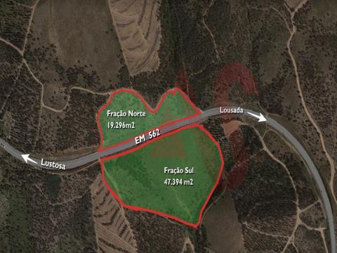 Mata de Ervelhide da Quinta da Quintã em Sousela, Lousada