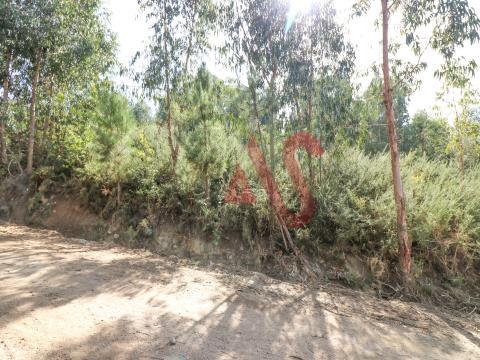 Terreno florestal com 2.500 m2  em São Miguel, Vizela