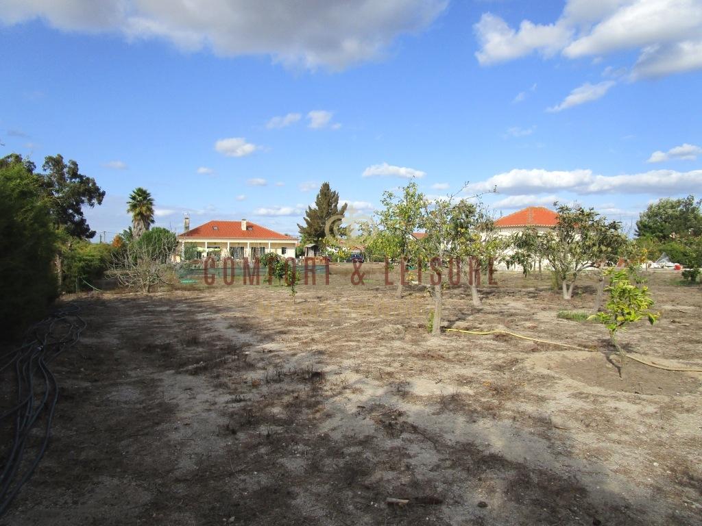 Moradia Isolada T4+1 perto de Santo Estêvão
