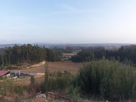 Terreno com 20.000 em Terroso, Póvoa de Varzim