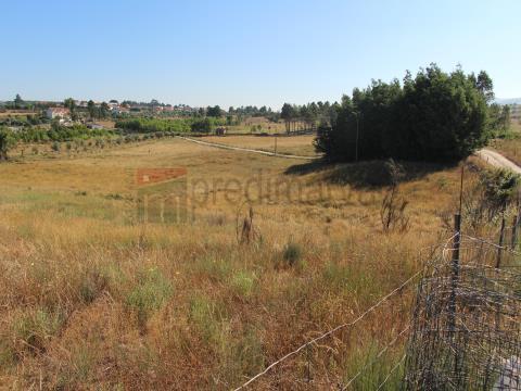 Fattoria/Azienda Agricola