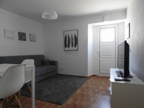 1 bedroom house remodeled downtown Lagoa