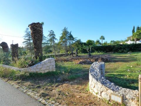 Lote de Terreno - Construção moradia - Mexilhoeira Grande - Serra e Mar
