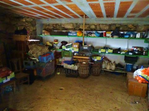 Farm T4