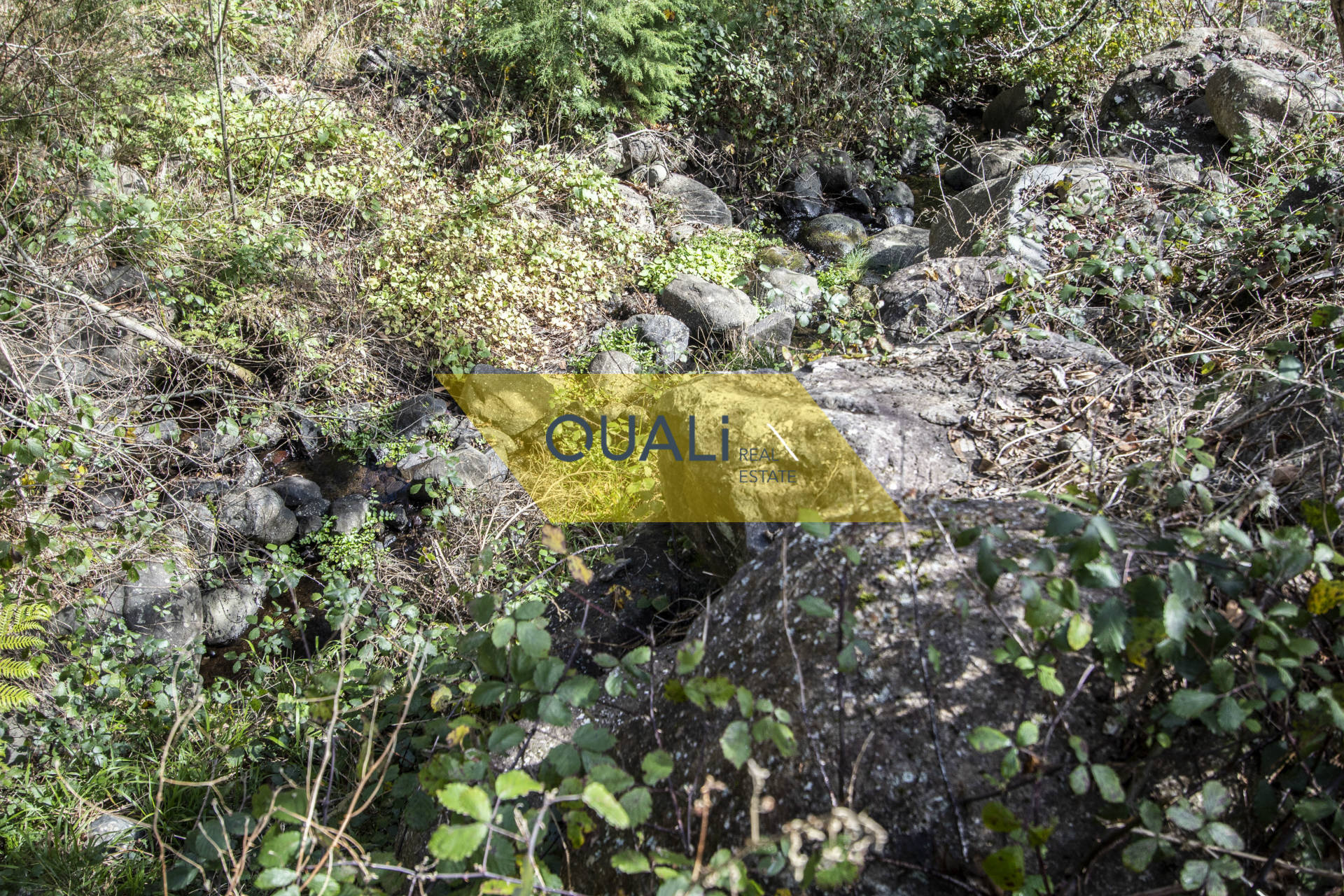 Terreno Agrícola no Monte - Ilha da Madeira. €119.500,00