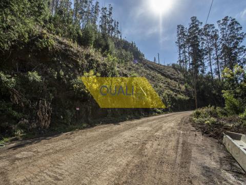 Terreno rústico 1030m2 no Monte - Ilha da Madeira. €60.000,00