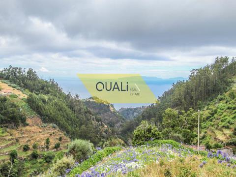 Land 980 m2 im Rat von Santa Cruz €50.000, mitten in der Natur eingefügt.