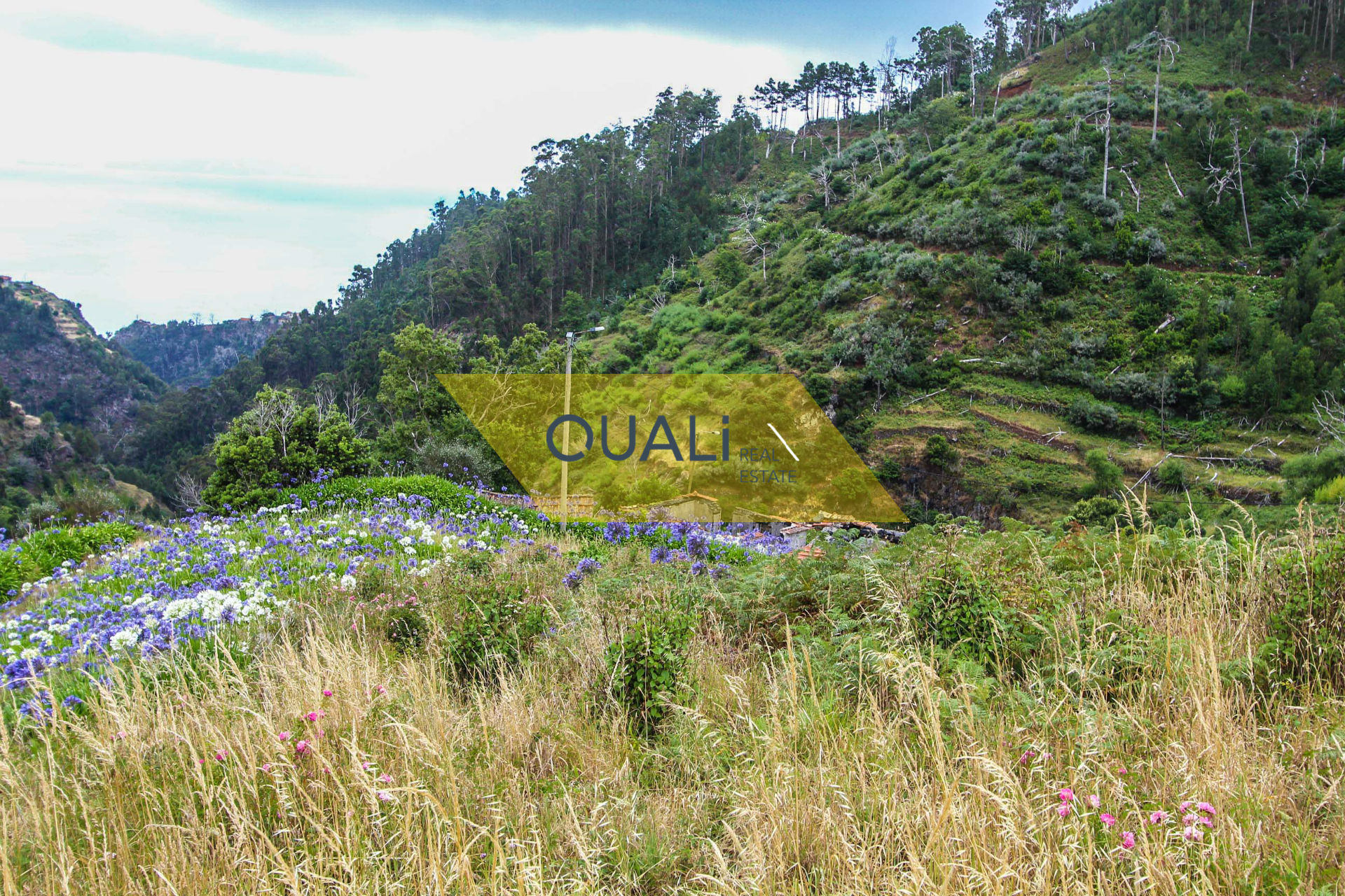 Land 980 m2 in Council of Santa Cruz € 50.000, inserted in the middle of the nature.