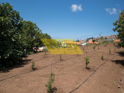 Houses and Land with 7.000m2 in Calheta - € 535.000,00