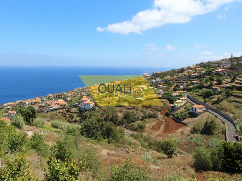 Land with 6180 m2 in Gaula - Madeira Island - € 76.000,00