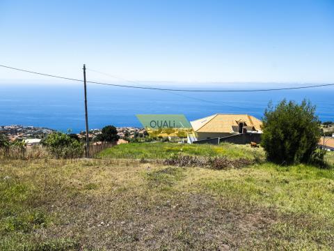 Immobilien Madeira - 2.750m2 Grundstück mit Meerblick in Calheta, Madeira - € 130.000,00