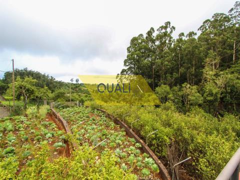 Terreno Misto de 4690 m2 -  Santo da Serra - €280.000,00